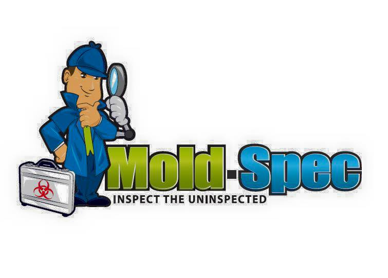 Mold Inspection & Mold Detection